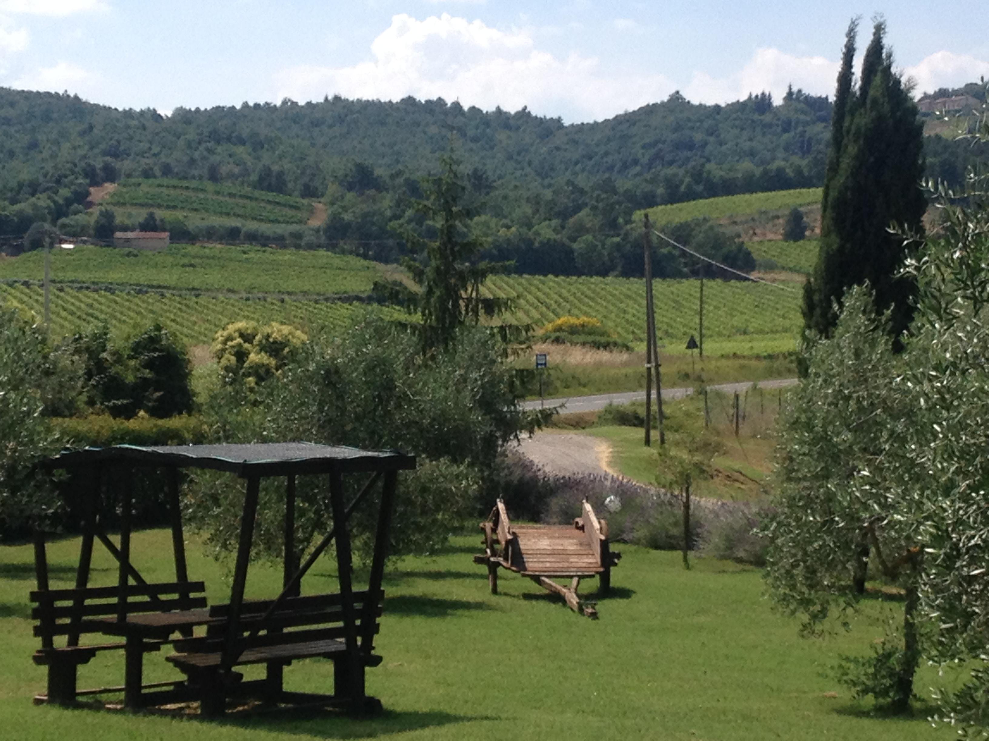 Foto Azienda Agraria Piombaia