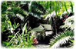 Residence Casa del Sole foto 3