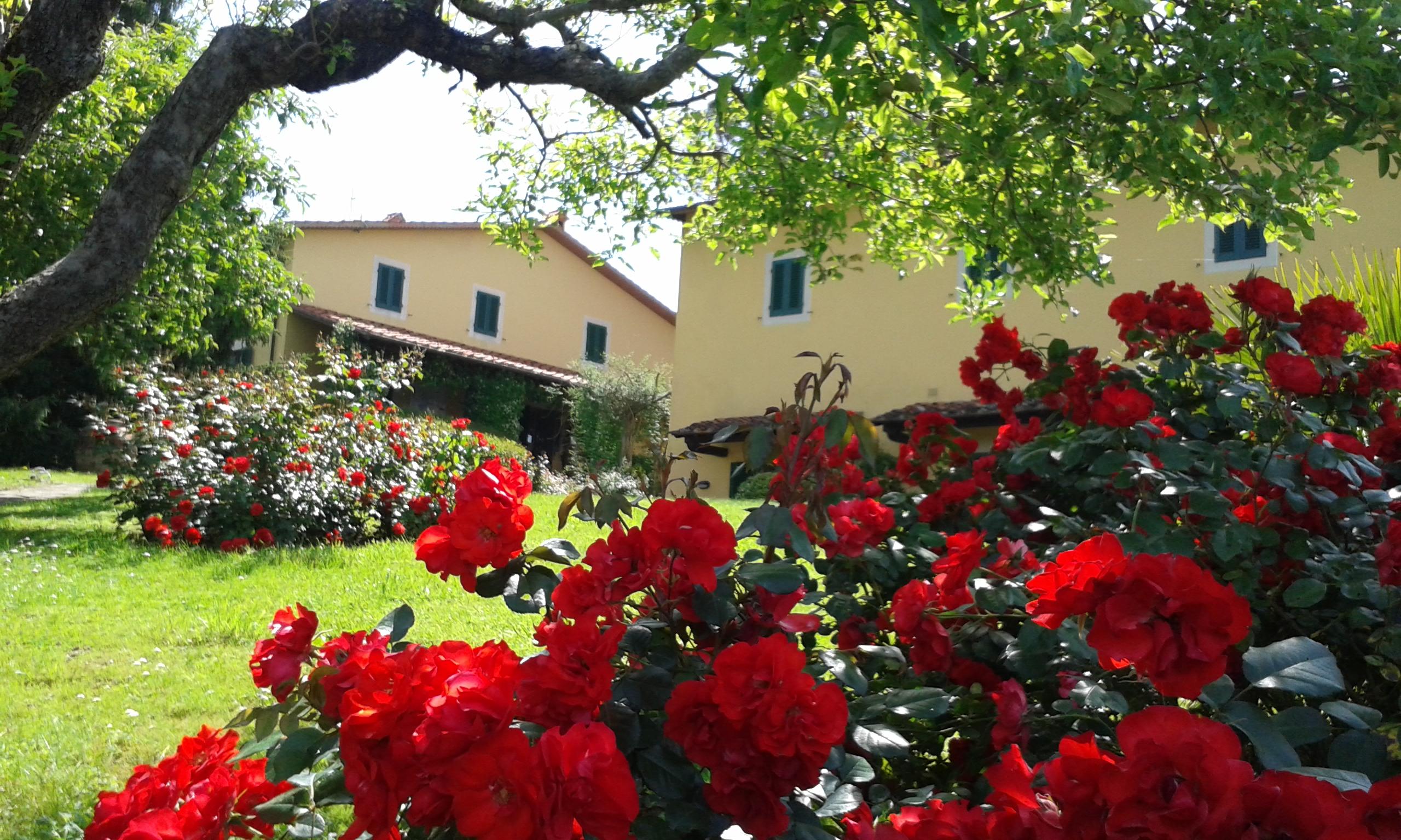 Agriturismo Casa Italia foto 1