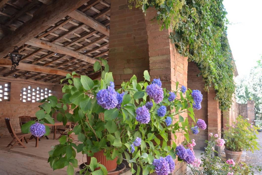 Agriturismo San Fabiano foto 6