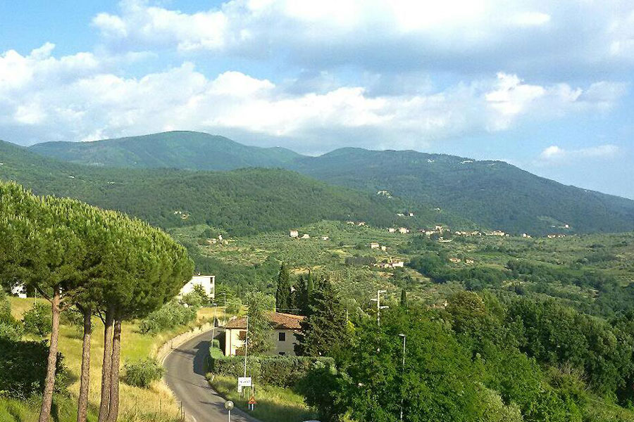 The Florence Hills Resort  foto 2