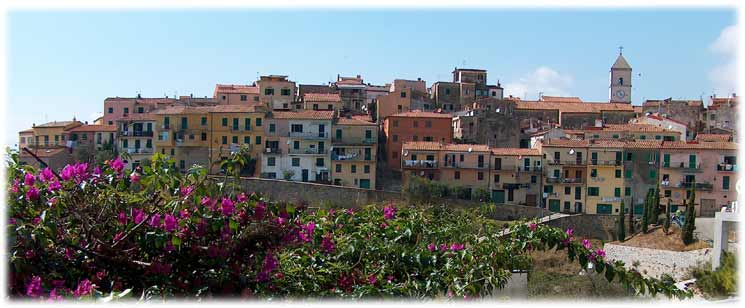 Villino nel Bosco foto 5