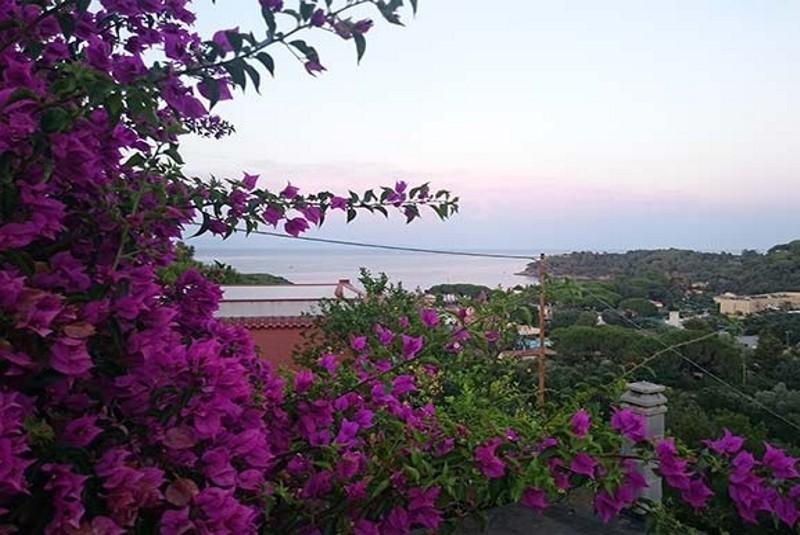 Foto Elba Residence