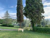 Agriturismo Antica Fornace Volterra foto 6