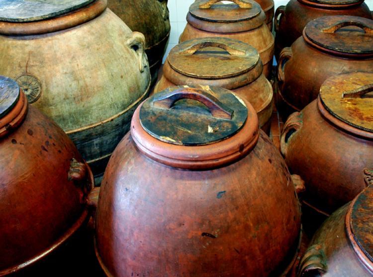 Azienda Agricola Inalbi foto 2