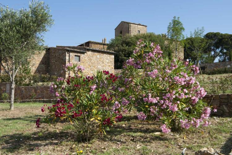 Antico Borgo Casalappi foto 3