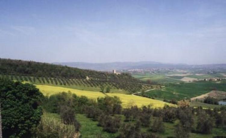 Agriturismo Castello di Grotti foto 2