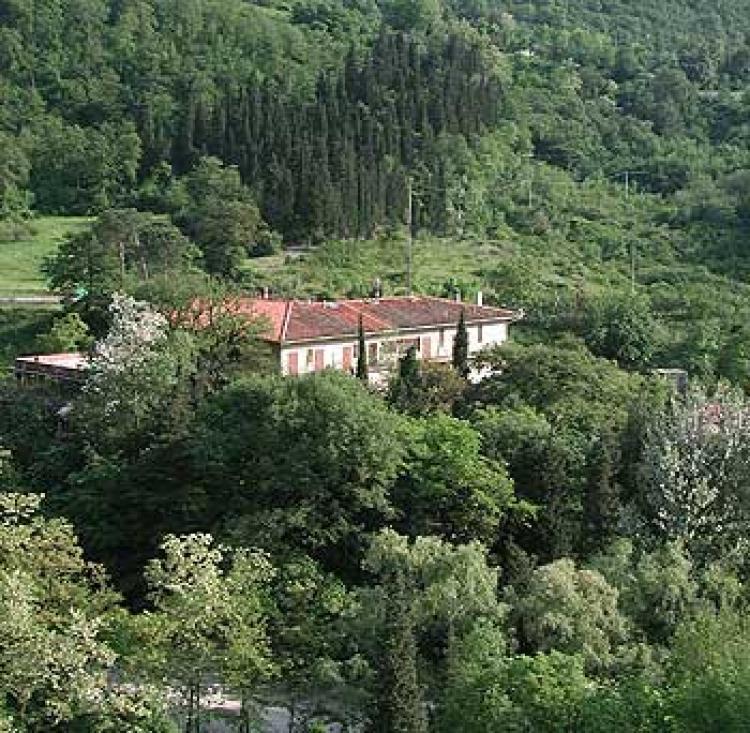 Hotel la Selva foto 1