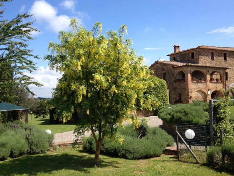 Azienda Agraria Piombaia foto 3