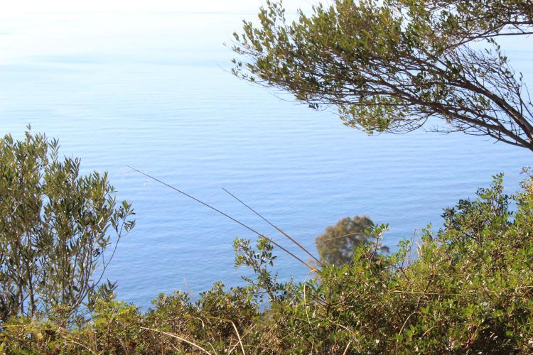 Costa del Mito foto 116